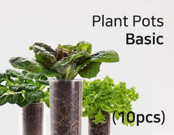 집에서 베란다텃밭이나 실내텃밭을 가꿔 채소키우기 쉬운 가정용 식물재배기 우리텃밭 파쯔파쯔입니다 일부 수경재배 제품과는 다르게 유기농 흙을 사용한 토경재배로 식물 키우기가 아주 수월합니다 홈가드닝 가드닝 플랜테리어 인테리어화분 등 식물인테리어에 관심이 많으신 분들은 씨더스가 만든 식물LED를 주목해주세요 연말선물 부모님선물로도 좋습니다 공기정화식물 다육식물 다육이를 심어보세요 텃밭가꾸기 좋아하시는 분들 주말농장 가실 필요 없어요 베란다정원 실내정원 가정용 채소재배기 우리텃밭 파쯔파쯔로 가정에서 인테리어화분 겸 오가닉 베란다텃밭 아주 좋습니다