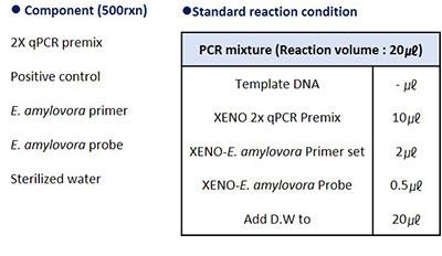 xe_ser_product_img2.jpg